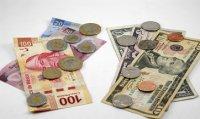 dolares-y-pesos_media